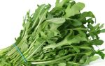 Нужно ли мыть салат или рукколу из упаковки: чем обрабатывают листья перед продажей