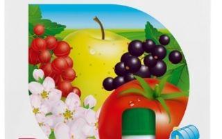 Как избавиться от тли на комнатных цветах: химия и народные средства