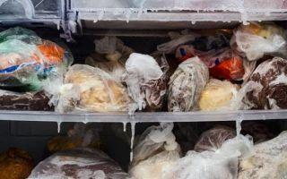 Сколько можно хранить мясо в морозилке — температура и сроки