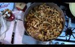 Как замачивать грибы для супа и перед жаркой: правильная обработка сушеных и свежих грибов разных видов