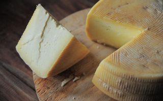 Можно ли хранить твёрдый, плавленый или тёртый сыр в морозилке: ответы по пунктам