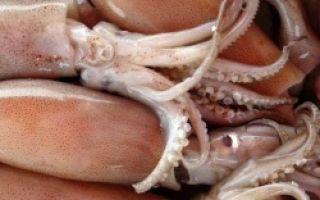 Сколько и как варить кальмары для салата, чтобы они были мягкими