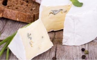 Можно ли замораживать сыр сулугуни в морозилке, как правильно хранить рассольные сыры
