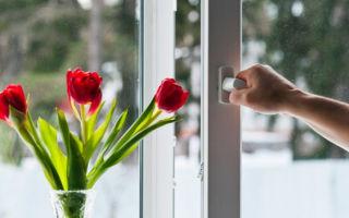 Уход за пластиковыми окнами и подоконниками: правила эксплуатации, средства по уходу, советы специалистов