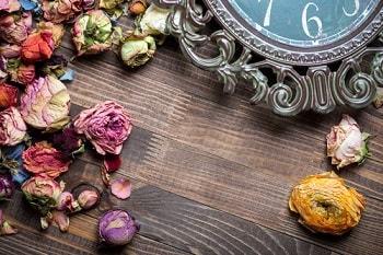 Почему нельзя дома хранить сухие цветы – правда и суеверия