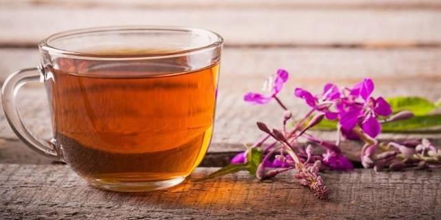 Иван-чай: как собирать и сушить, чтобы сохранить целебные свойства
