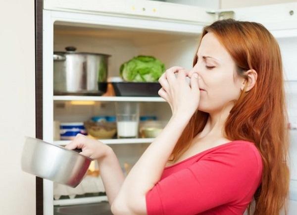 Можно ли мыть холодильник хлоркой и какие есть альтернативные средства
