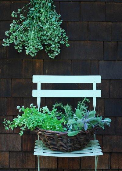 Травы для чая – самые полезные растения, как их собирать, как правильно заваривать травяной чай