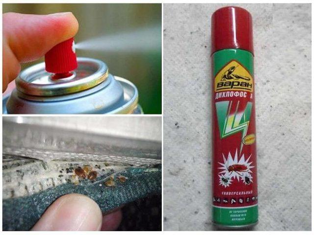 Дихлофос НЕО без запаха: инструкция по применению