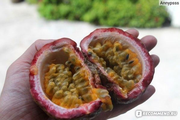 Маракуйя: как выбрать, как едят и как хранить, на что похожа по вкусу