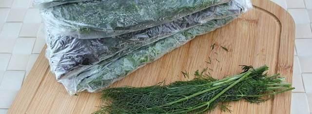 Как сохранить на зиму свежую петрушку: как правильно заморозить, хранить и использовать