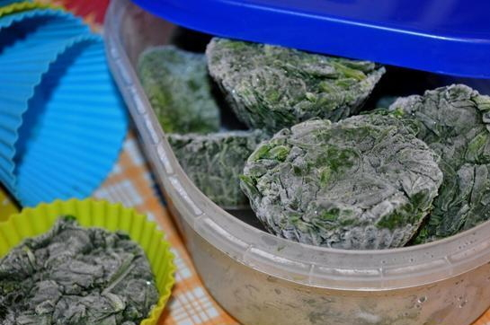 Как заморозить крапиву на зиму для супа: заготовка сырья, выбор тары, процесс заморозки и использование