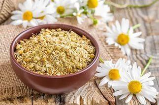 Как сушить ромашку в домашних условиях, сохраняя максимум пользы и аромата