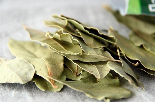 Как избавиться от запаха пластмассы в чайнике – причины и методы борьбы