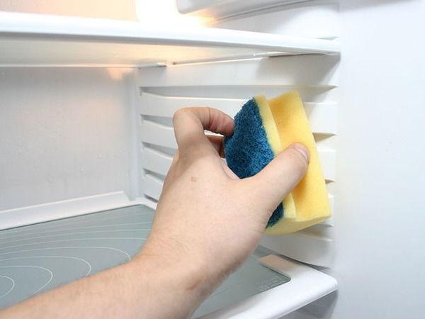 Как избавиться от запаха рыбы на посуде, в помещении, в холодильнике, на ткани?