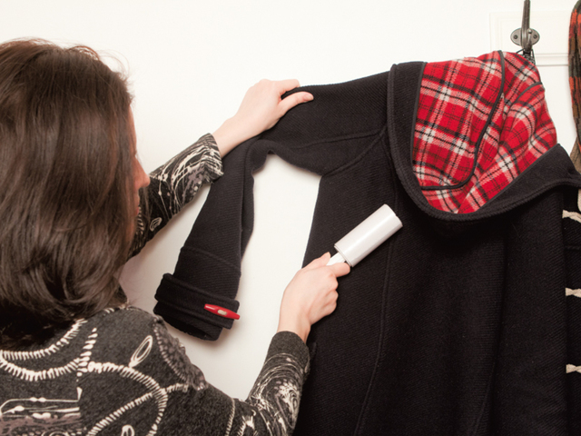 Как избавиться от кошачьей шерсти в квартире и на одежде?
