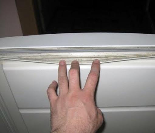 Как и чем отмыть холодильник от плесени: удаляем грибок с резинки, стенок и полочек