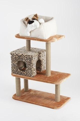 Как отучить кота драть мебель, диван гуманными способами?