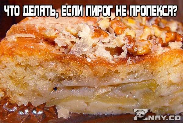 Подгорает низ выпечки в газовой духовке: что делать, если пирог не пропекается?