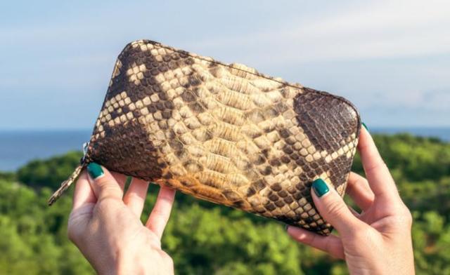 Как отличить натуральную кожу от искусственной, не выходя из магазина?