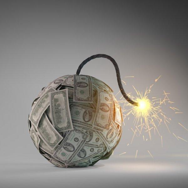 Можно ли держать дома денежное дерево: советы тем, кто хочет вырастить толстянку