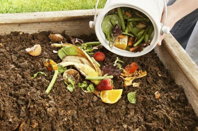 Кладут ли яблоки в компостную яму – свежие, подгнившие, недозрелые