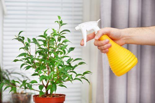 Как избавиться от пыли в комнате, квартире и уменьшить ее количество