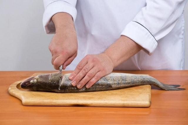 Как выбрать нож для чистки рыбы: обзор лучших вариантов