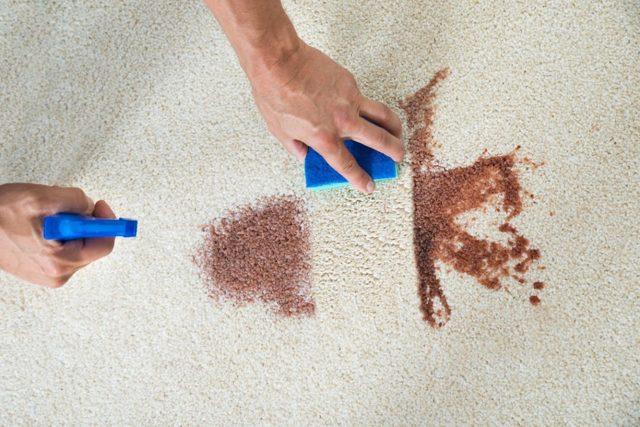 Чем отмыть кровь с дивана – выбираем средство в зависимости от вида обивки