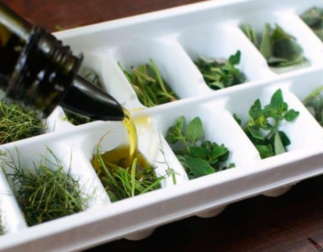 Как хранить свежую зелень в холодильнике и как долго она останется свежей в пакете, бумаге, контейнере, стеклянной банке, морозилке