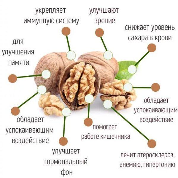 Как хранить грецкие орехи в домашних условиях очищенные и в скорлупе