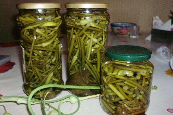 Стрелки чеснока – рецепт приготовления на зиму: консервирование, заморозка, заготовка приправы