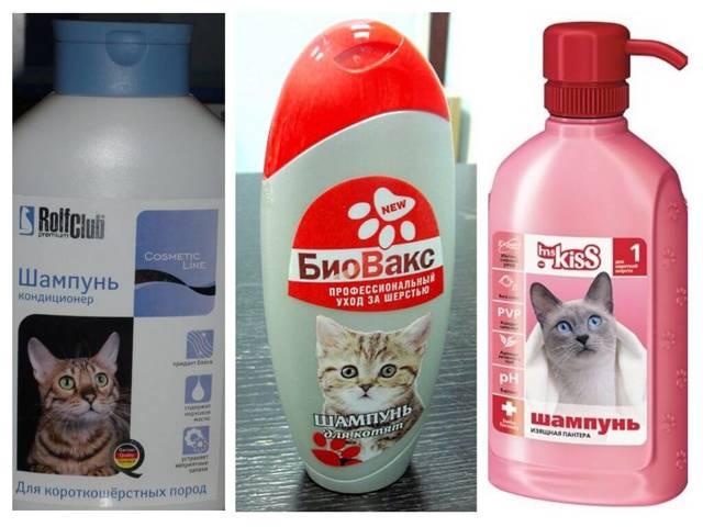 Как мыть кота: когда это нужно делать, как выбрать шампунь от блох и искупать любимца в ванной