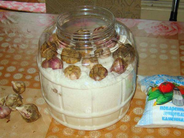Как хранить чеснок в домашних условиях в квартире – семь способов