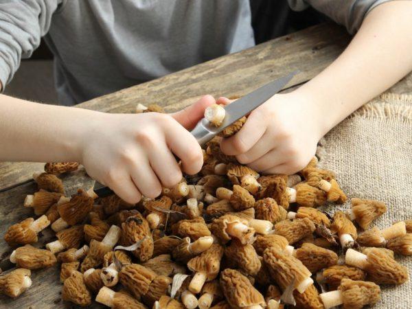Как чистить грибы в домашних условиях?