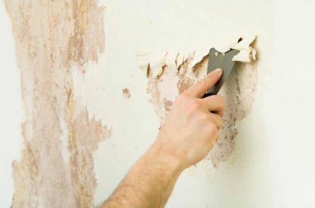 Как и чем отмыть побелку с пола, стен, потолка после ремонта
