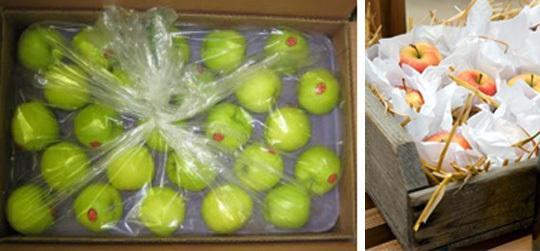 Хранение овощей на балконе зимой при минусовой температуре