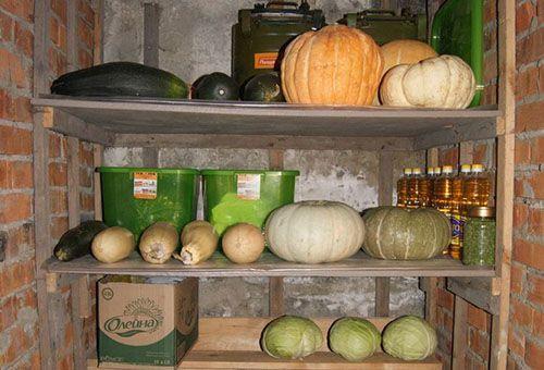 Как хранить кабачки дома, в квартире, в погребе?