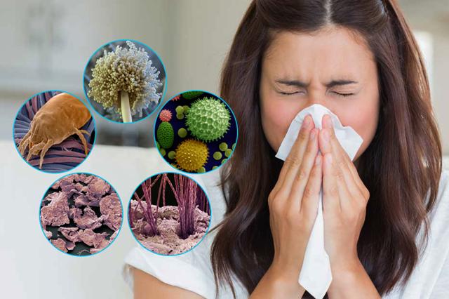 Откуда берется пыль в квартире и как это предотвратить?