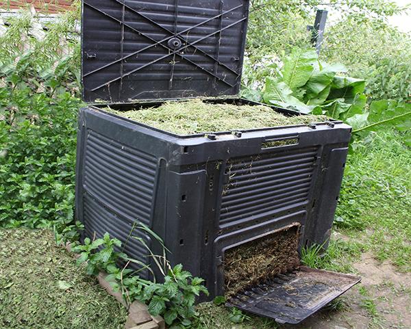 Что можно и нельзя класть в компостную яму: полезные и запрещенные компоненты
