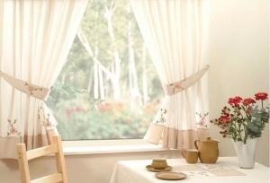 Как выбрать пылесос: на что обращать внимание при покупке?