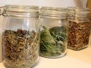 Как сушить и хранить мяту в домашних условиях: секреты заготовки