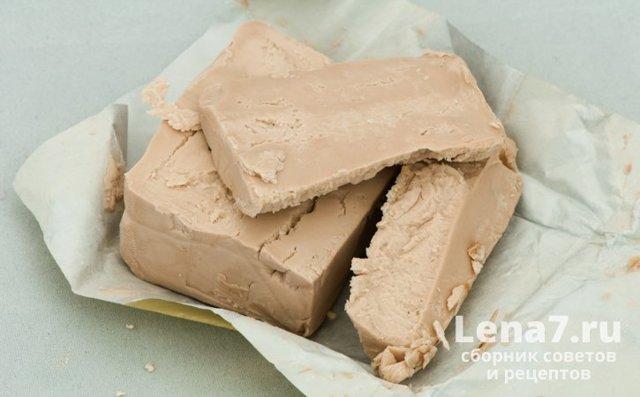 Можно ли живые и прессованные дрожжи хранить в морозилке: правила
