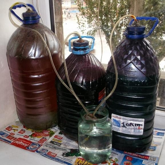 Можно ли хранить воду в пластиковых бутылках и канистрах: виды пластика, свойства материала