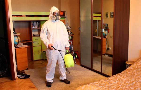 Как избавиться от тараканов в квартире быстро и навсегда?