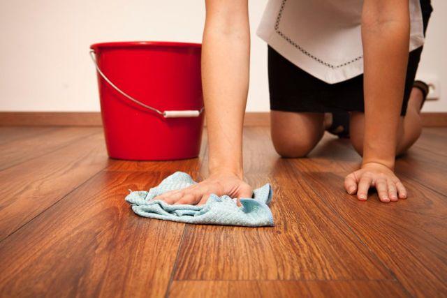 Как избавиться от запаха животных в квартире: способы, которые реально работают
