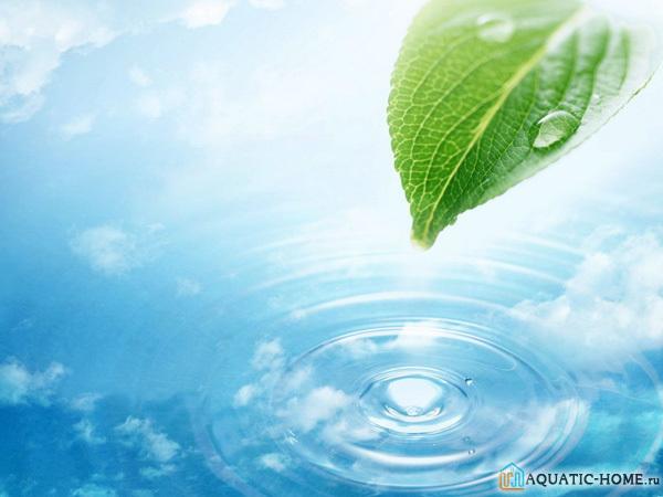 Как очистить воду от железа в квартире или коттеджеиз скважины?