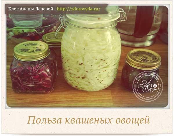 Ферментированная капуста: рецепт без соли, польза и вред продукта, нюансы приготовления