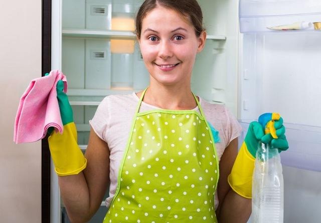 Чем мыть холодильник, чтобы не было запаха – правила обработки изнутри и снаружи