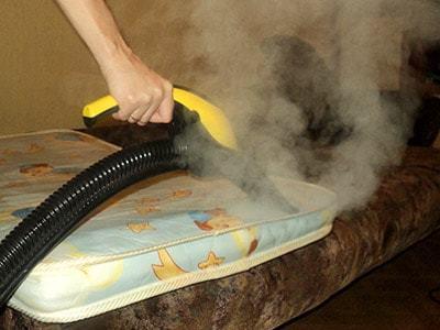 Как вывести блох из квартиры без риска для здоровья жильцов?